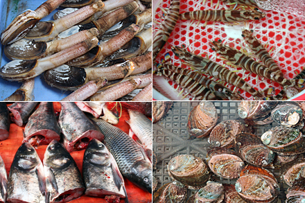 Xiamen Seafood Markets